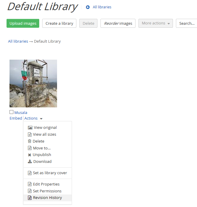 sitefinity default library